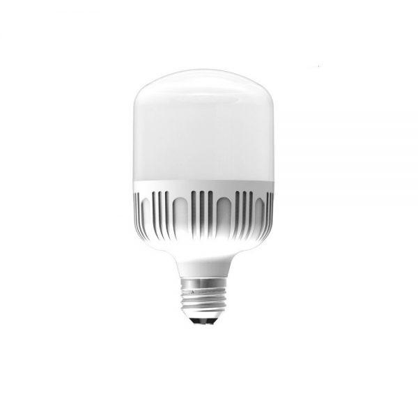 Đèn LED Bulb công suất lớn Điện Quang ĐQ LEDBU10 18765AW