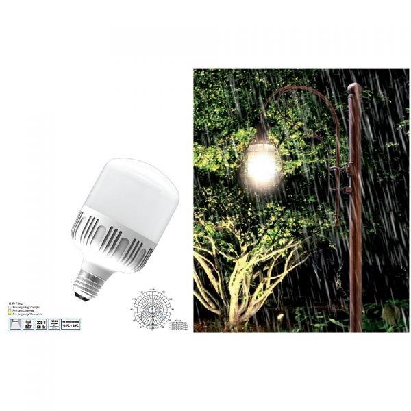 Đèn búp LED công suất lớn Điện Quang ĐQ LEDBU10 2